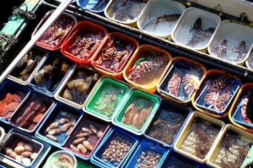 タイの水産加工企業の、船舶操業禁止の影響は軽微の見通し