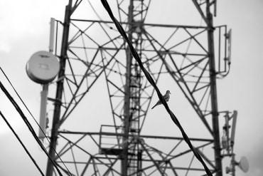 インドネシア通信塔サービス展開のサラナ・メナラ・ヌサントラ、企業解説