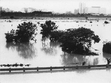 タイ南部に限定して寄付控除、緊急支援を決定