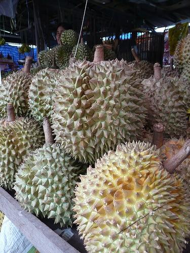 タイの冷凍ドリアン大手、クイーンフローズンフルーツは中国への輸出量を増加