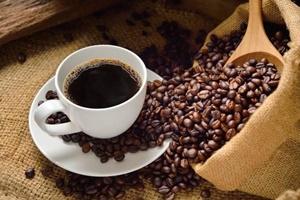 インドネシア国内のコーヒー市場が成長-プラシダ・アネカ・ニアガ社について【インドネシア:コーヒー】