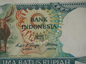 インドネシアのサリム・グループに関して【インドネシア:財閥・食品】