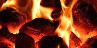 石炭採掘大手ブミ・リソーシズは2019年上半期に売上増加の見通し【インドネシア:石炭採掘】