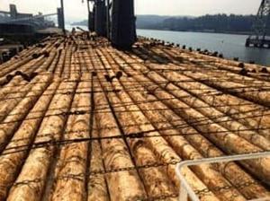 マレーシアの木材市場に関して【マレーシア:製造・木材】